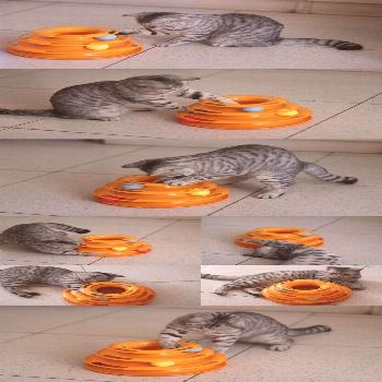 Cat Toys for Cats Crazy Ball Disk Interactive Amusement Plate Play Disc Turntable Cat Toys for Cats