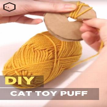 Did you know you can make your very own cat toys? It's easy! This simple tutorial shows you how to