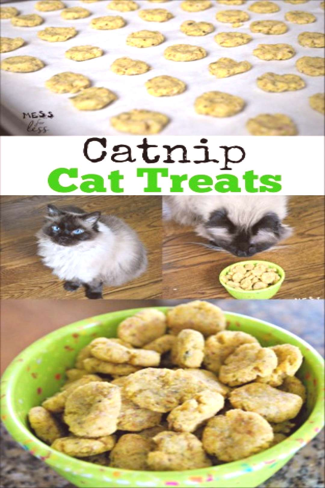 This tasty Catnip Cat Treats Recipe, which is sponsored by Bounty, is simple to make and will you h